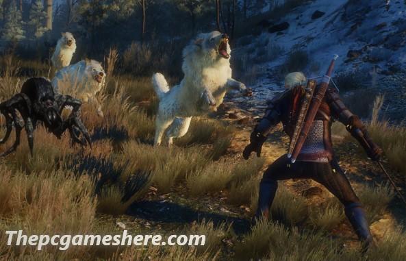 The Witcher 3 Wild Hunt Torrent